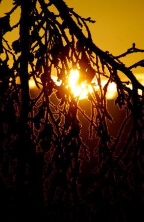 Frosty Sunset - James Dunn Photography