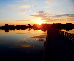 Florida Sunrise - Marty Leake