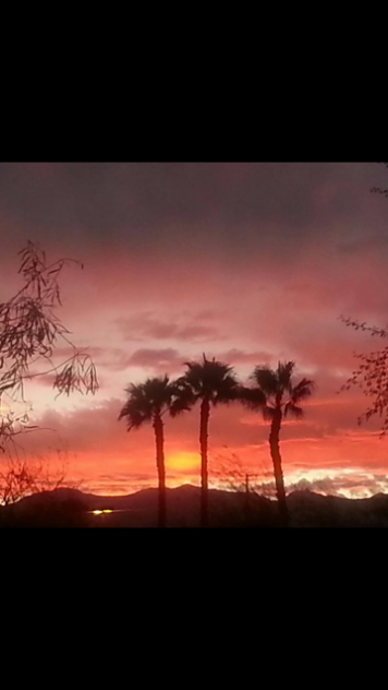 Palm Springs Sunset, CA - Shannon