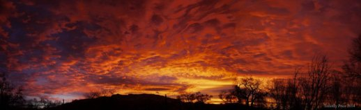 Sunrise - Timothy Price