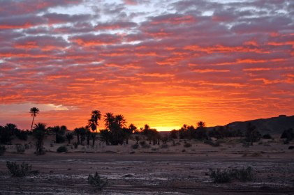 Sahara Desert Sunset - artist Karen Hadfield