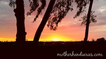 MotherHenDiaries.com