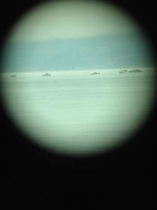 Fisheye Photo 6