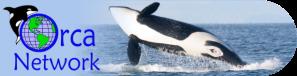 ORCA NETWORK LOGO