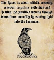 untitled Healing Powers of a Raven