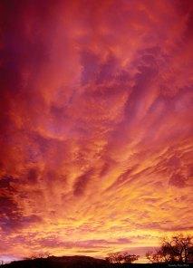 srvertpan SUNRISE - TIMOTHY PRICE