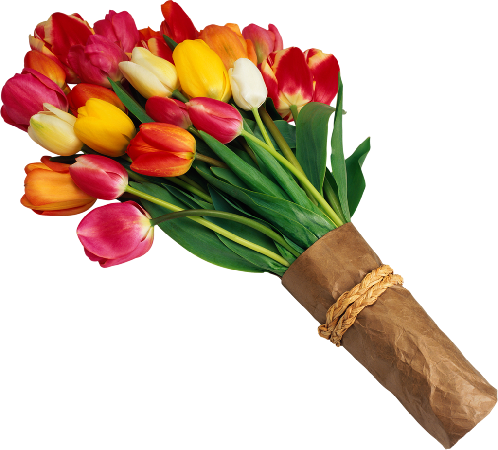 Flower Clipart Bouquet Of Red And Yellow Tulips Before Sundown