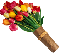 Flower-Clipart-Bouquet-of-Red-and-Yellow-Tulips